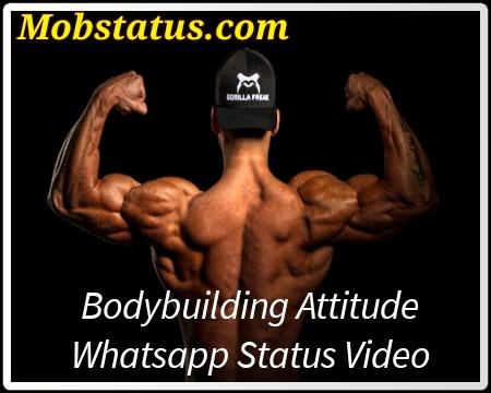 BodyBuilder Attitude Whatsapp Status Video
