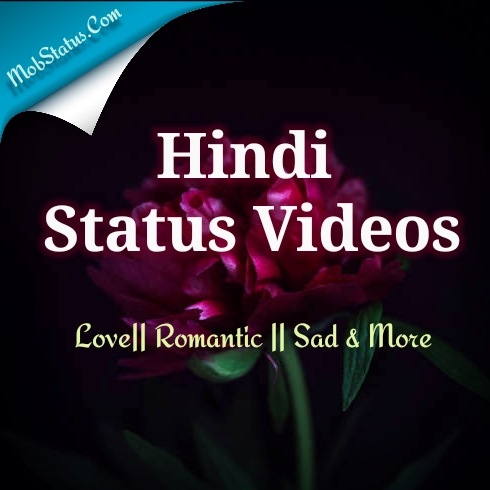 Hindi Status Videos