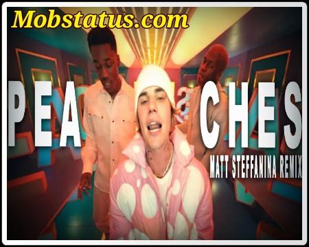Justin Bieber Peaches Song Status Video