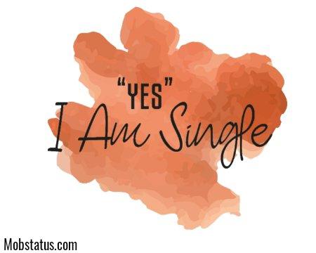 I Am Single Whatsapp Status Video