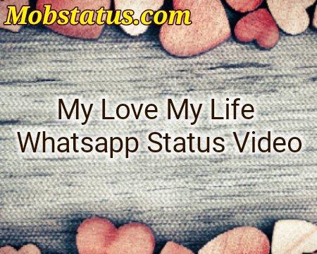 My Love My Life Whatsapp Status Video