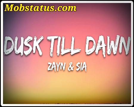 Dusk Till Dawn Zayn Song Status Video
