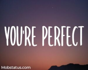 You're Perfect Charly Black Song Status Video