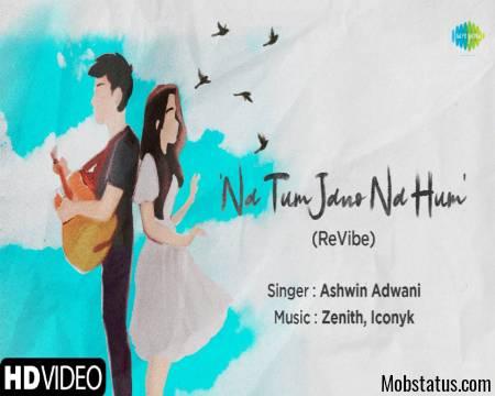 Na Tum Jano Na Hum (ReVibe) Song Status Video